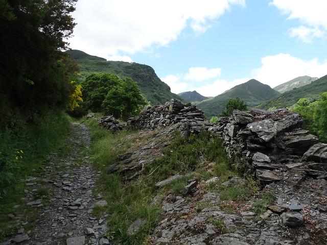 Camino en el PR-G 184 Ruta da Lagoa de Lucenza