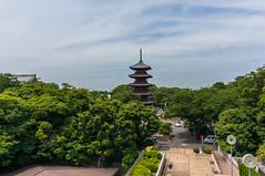 Five-story pagoda of Ikegami Honmonji