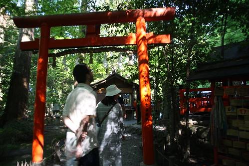 Arashiyama Bamboo Grove 2016