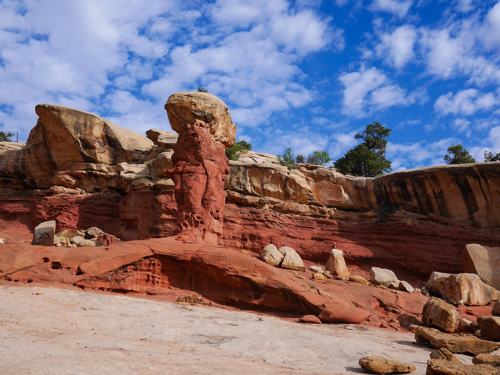 Hoodoo in Cohab Canyon