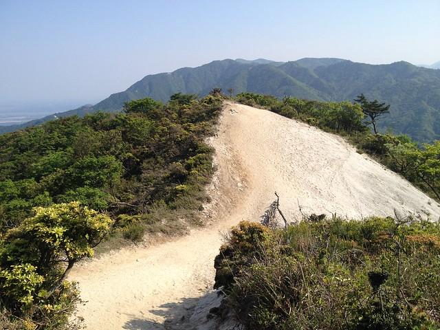 竜ヶ岳 表道 ザレ丘