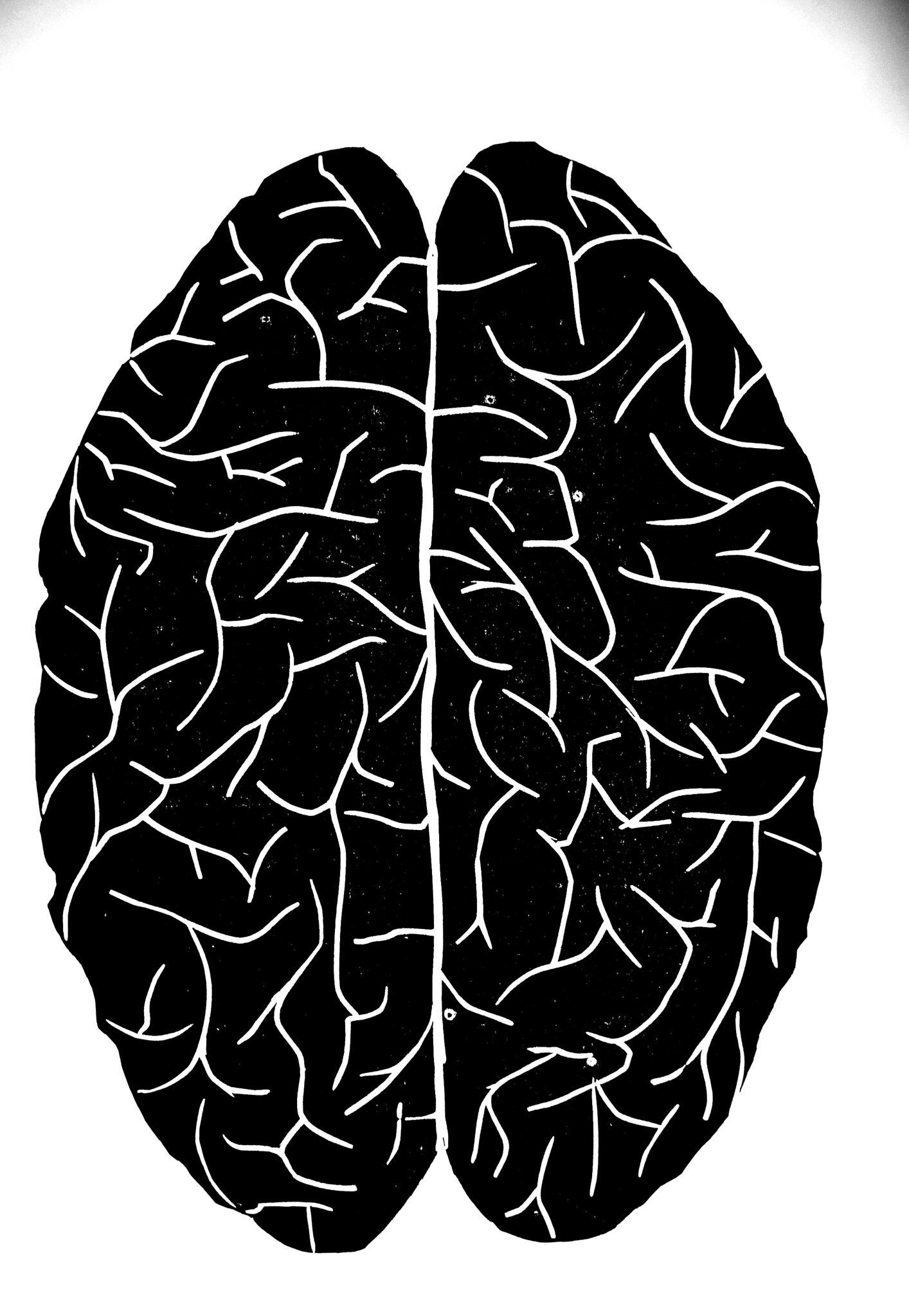 cerebro gravure