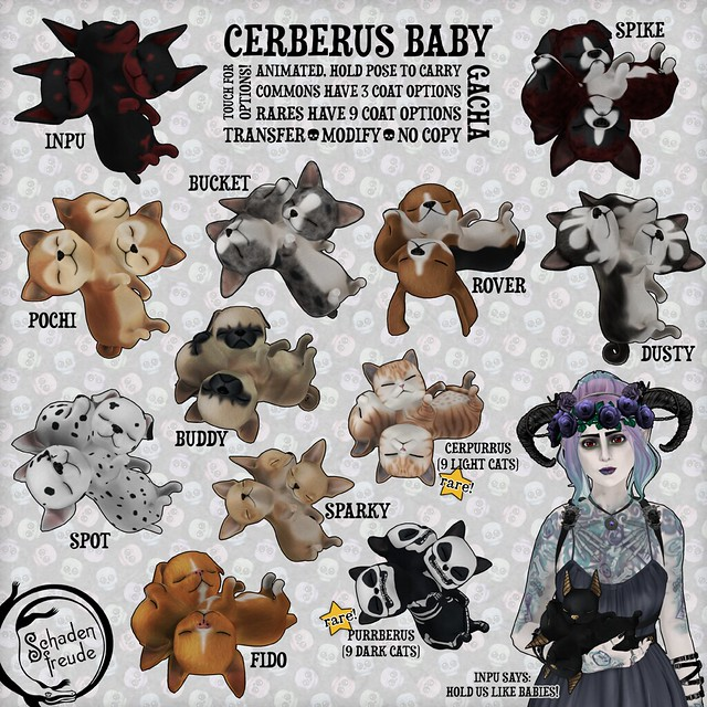 cerberus babies