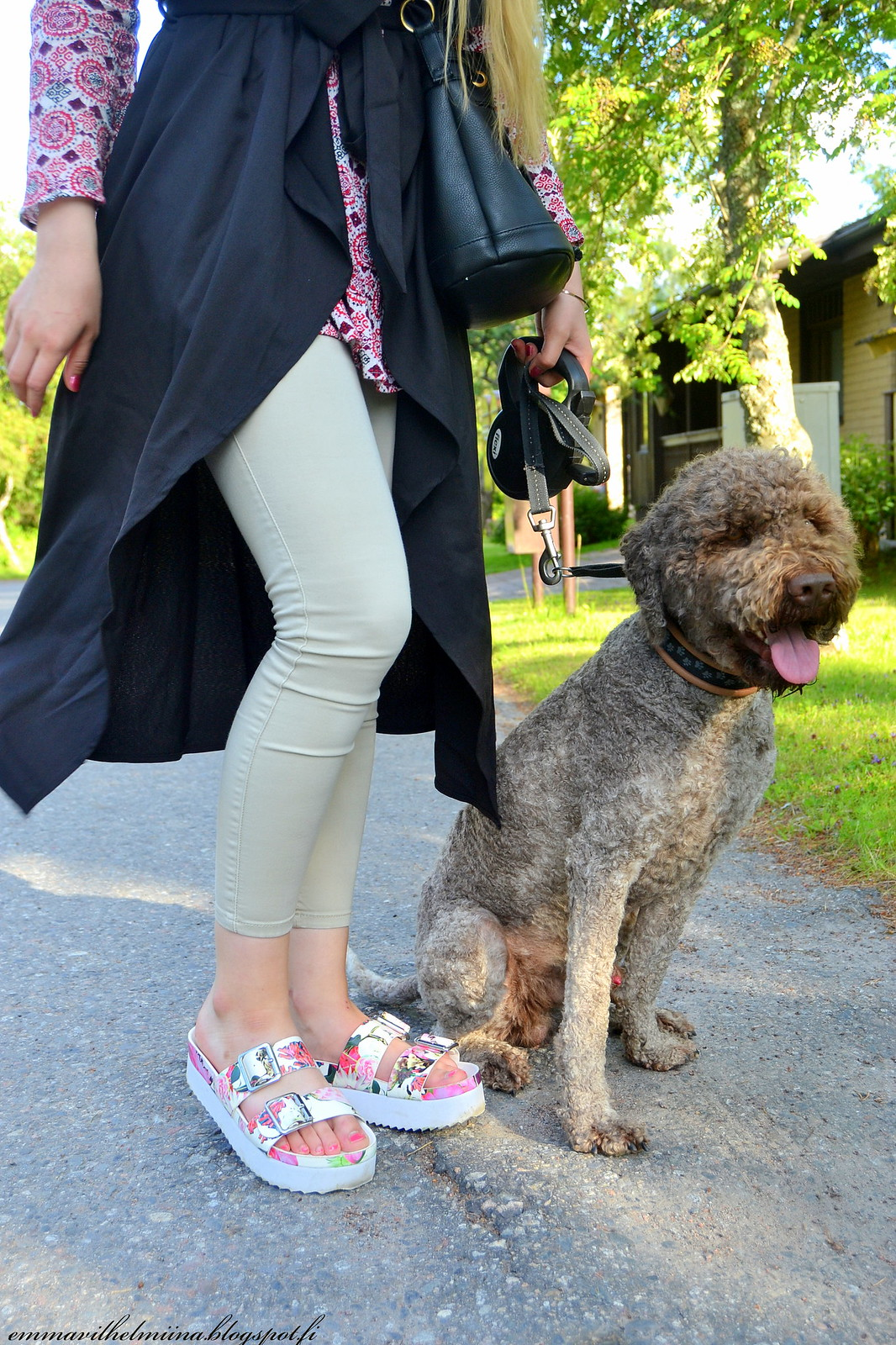 lagotto romagnolo and outfit