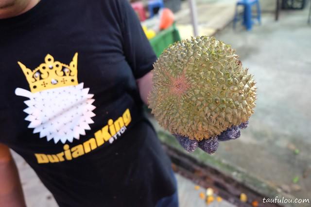 durian king (3)
