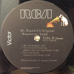 DR. BUZZARD'S ORIGINAL SAVANNAH BAND:S.T.(LABEL SIDE-B)