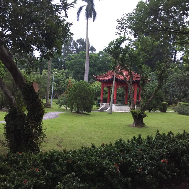 總統官邸 (10)