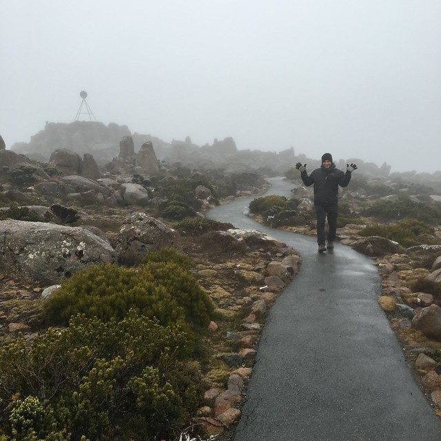 mount wellington in the fog