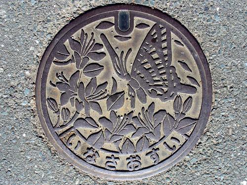 Inasa Shizuoka, manhole cover 2 (静岡県引佐町のマンホール2)