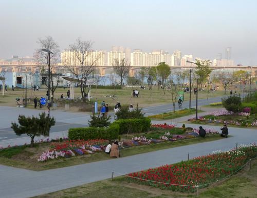 C16-Seoul-Parc Yeouido-Fete-j6 (7)
