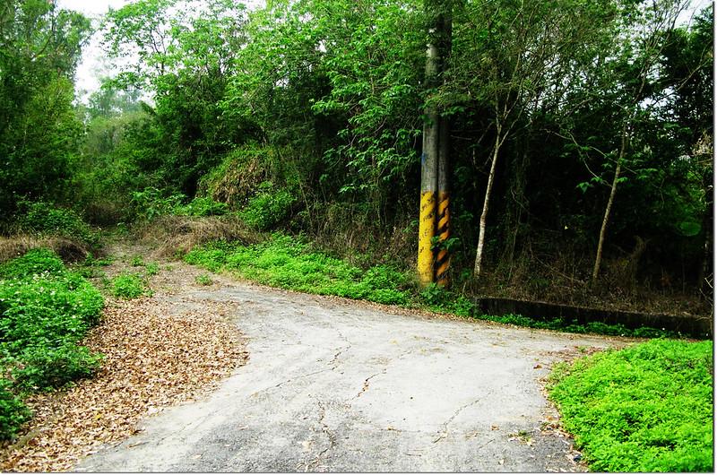埔姜林山停車處