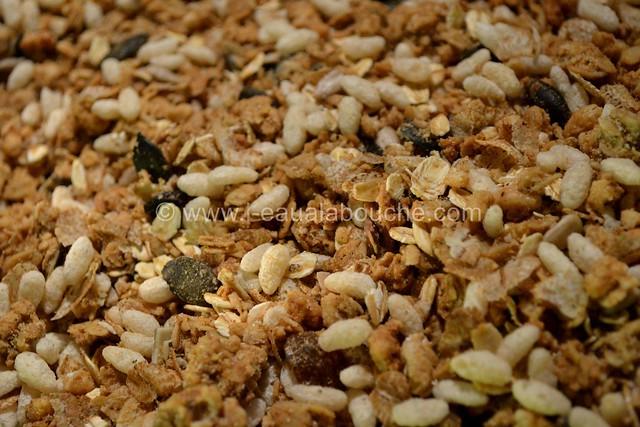 Barre de Céréales Maison © Ana Luthi Tous droits réservés 04