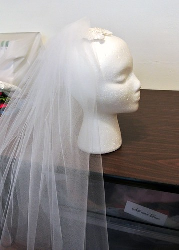 veil (1)