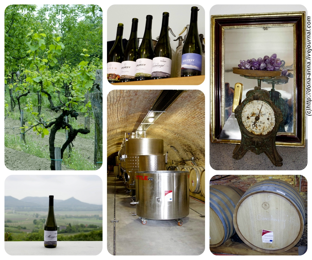 Gilvesy-winery-Collage-a
