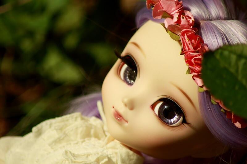 Little flowerhead