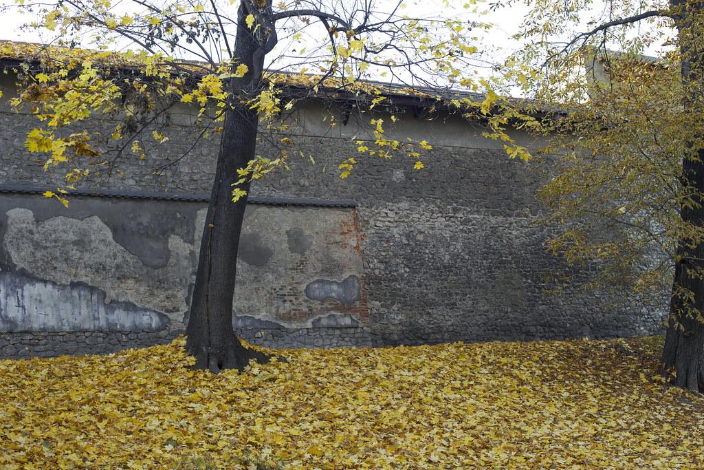 ОМД_28