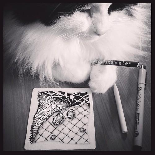 September 10 - Black & White