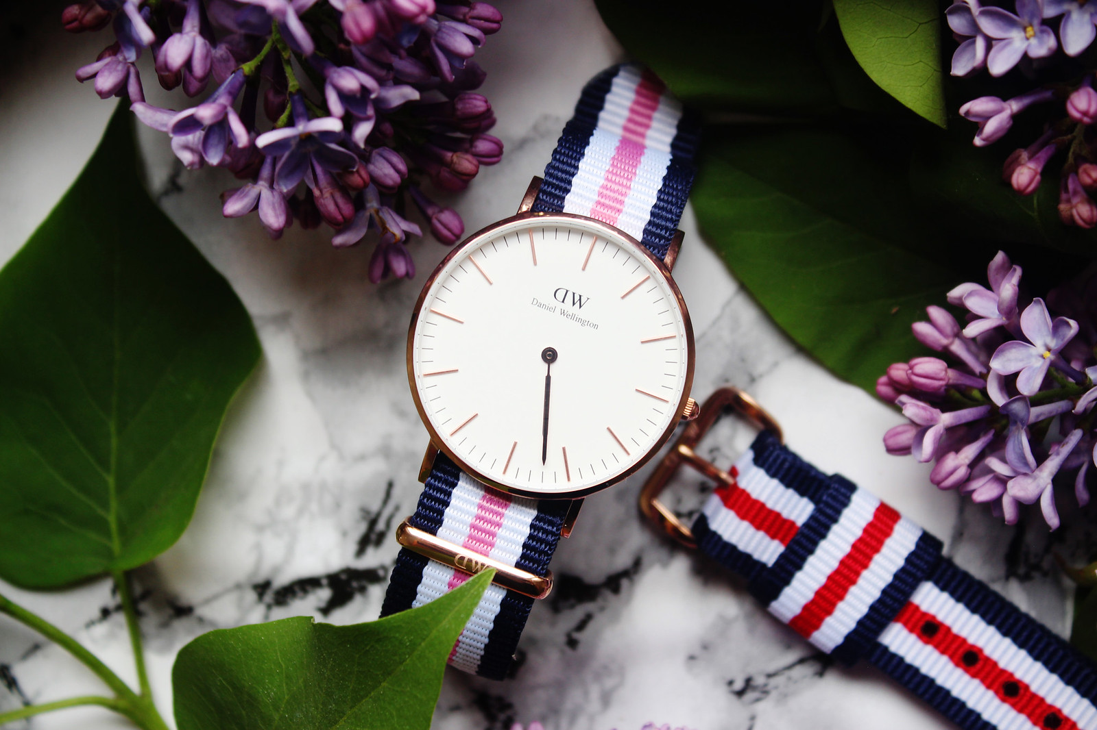 Daniel Wellington Classic Southampton watch