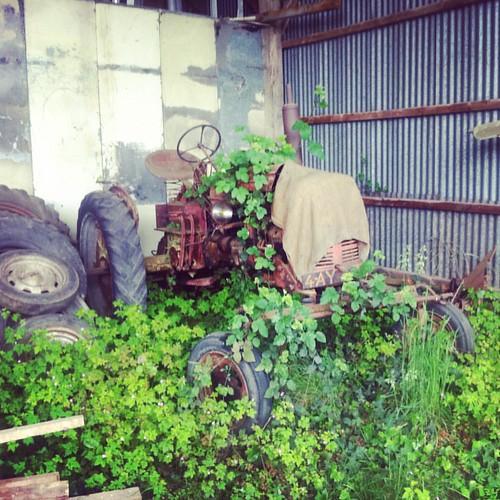 Le tracteur de mon père ;)