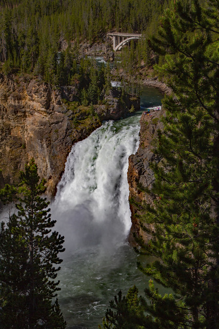 29171180650 8255d135da z Upper Falls: Yellowstone National Park
