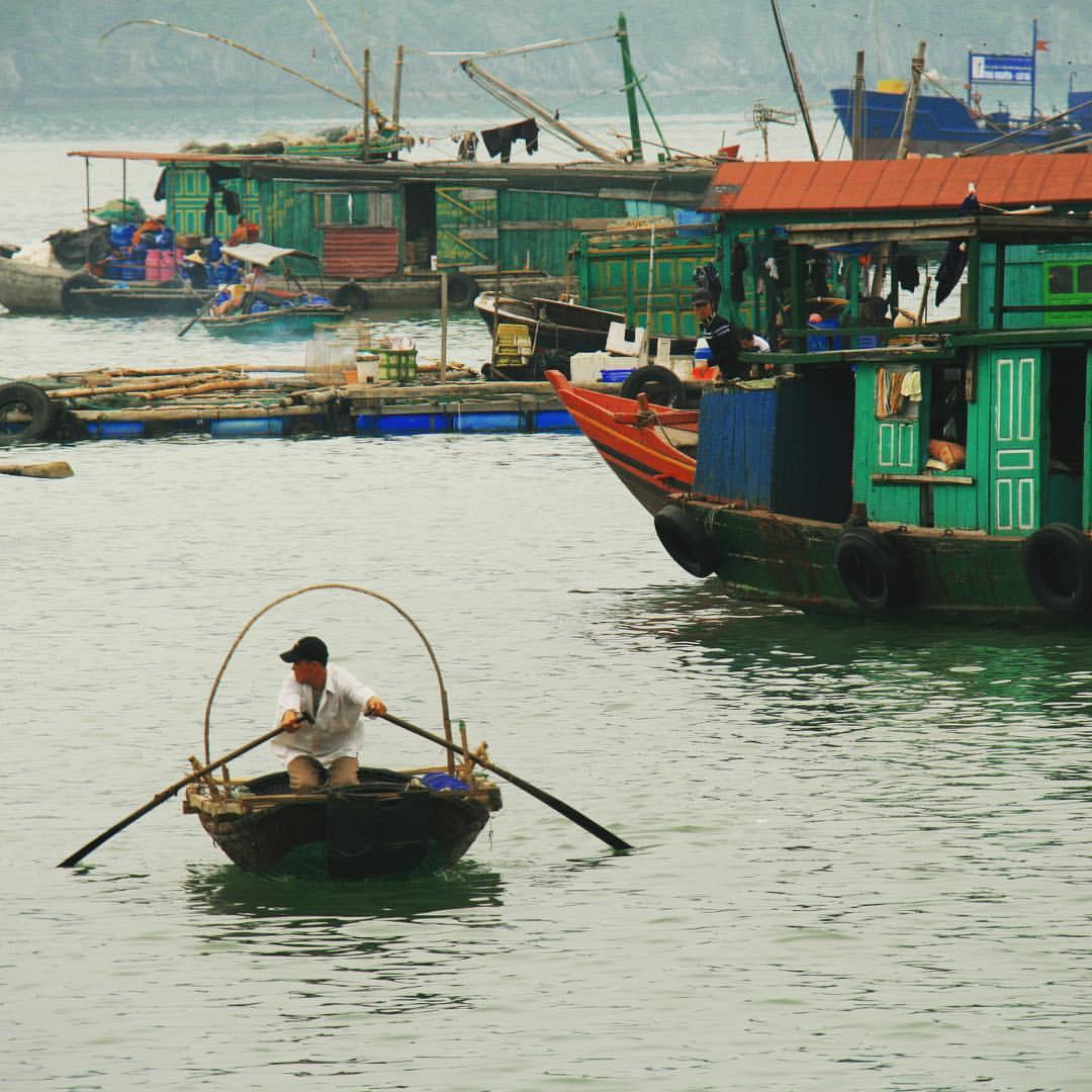 Around the world 2012 | Vietnam A floating fishing village in Han La Bay. #rtw2012 #45 #rtw #rtw365 #aroundtheworld #aroundtheworldtrip #oneyeartrip #maailmanympärimatka #matkamaailmanympäri #travelmemories #vietnam #halongbay #hanlabay #catbaisland #cr