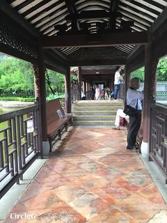 CIRCLEG 香港 遊記 美孚 嶺南之風 荔枝角公園  (41)