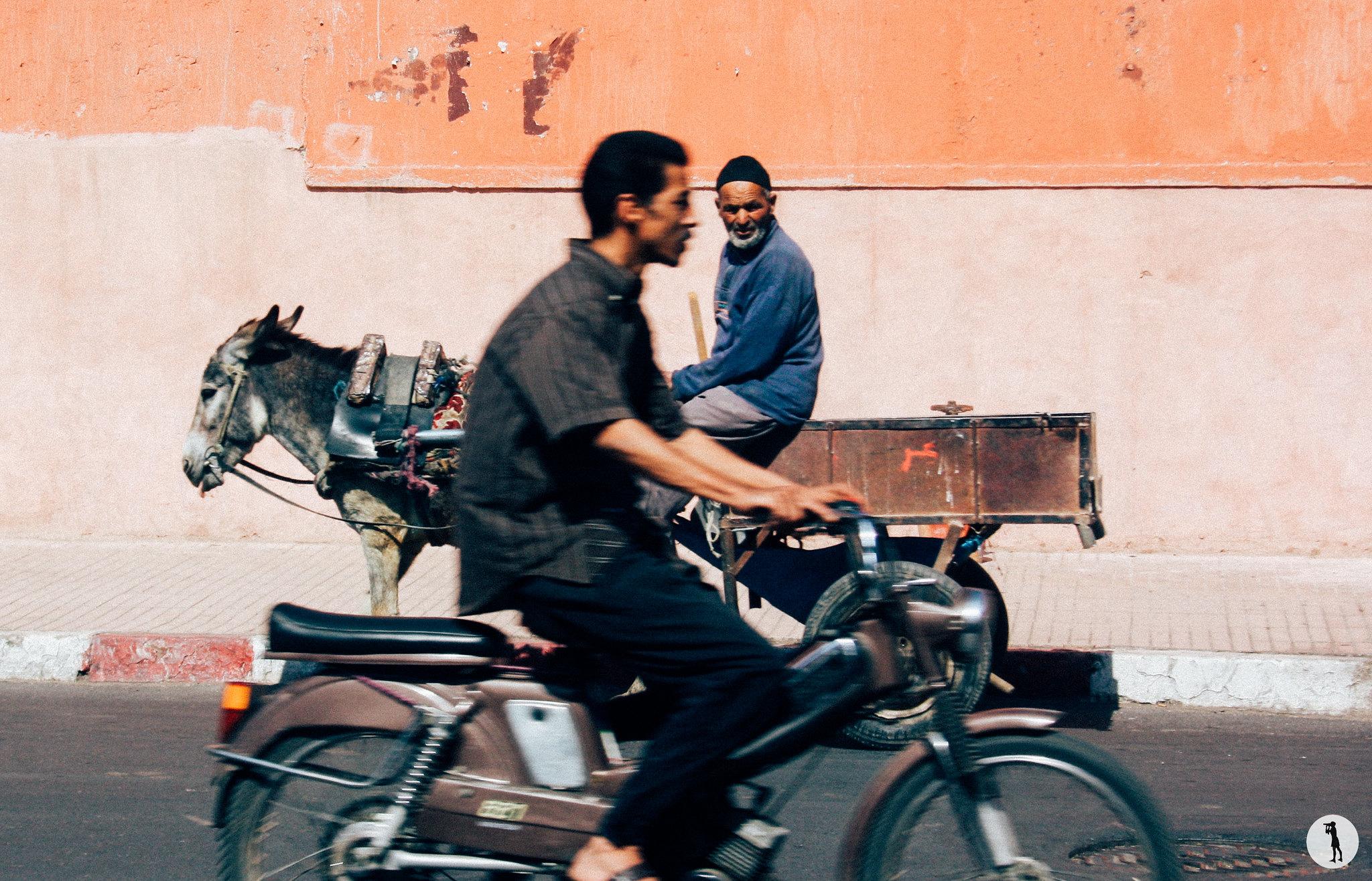 Voyage, Marrakech, Maroc (2012)
