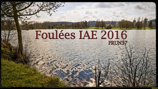 2016 03 Foulées IAE