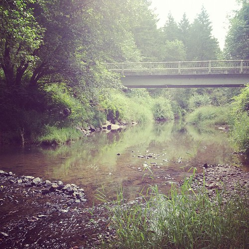 Salmon Creek. | by katie:m