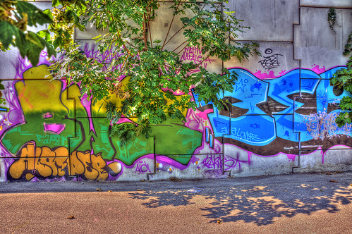 Graffiti with plant | by PAOLO 59