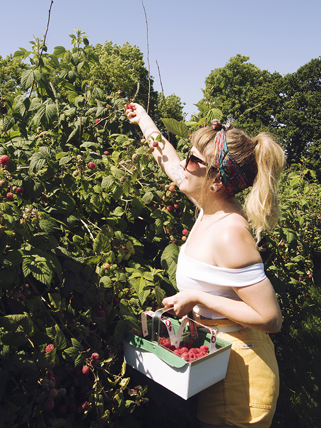 Pick your own raspberries Ashburton, Devon. Vintage summer pin up girl outfit.