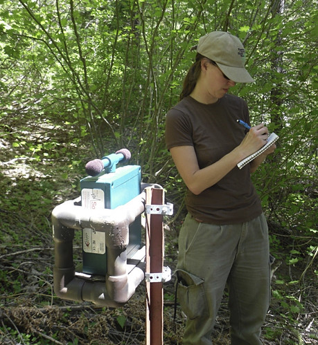 Forest monitoring | by Oregon State University