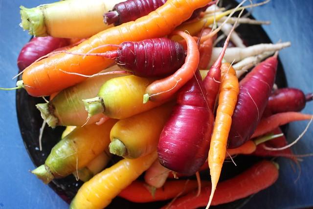 Suzie the Foodie's 2016 Harvest