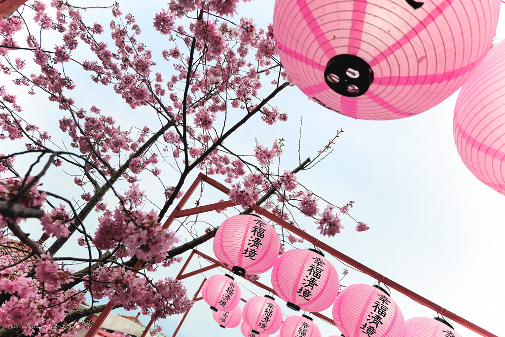 taiwan-lanterns-cingjing-farm