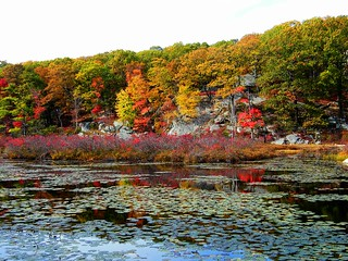 Harriman Park Colors | by Stanley Zimny (Thank You for 20 Million views)