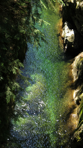 Looking down at the river at Lynn Canyon in North Vancouver, BC