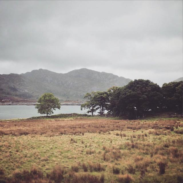 Roshven, Inner Hebrides #innerhebrides #Scotland #scottishscenery #Scottishhighlands #roshven