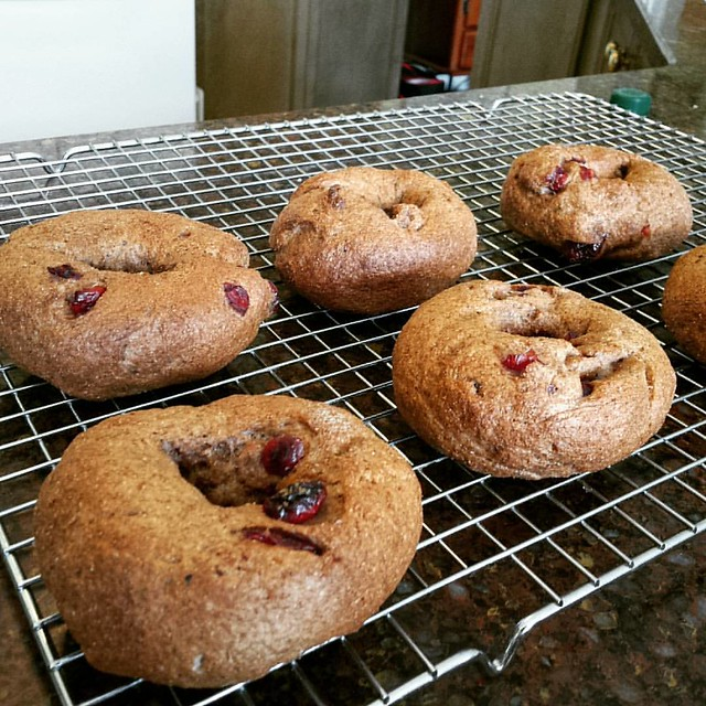 Cranberry Blueberry Bran Bagels