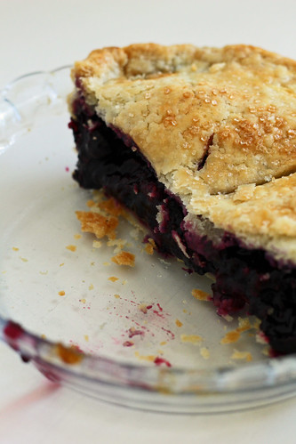 concord grape pie | by awhiskandaspoon