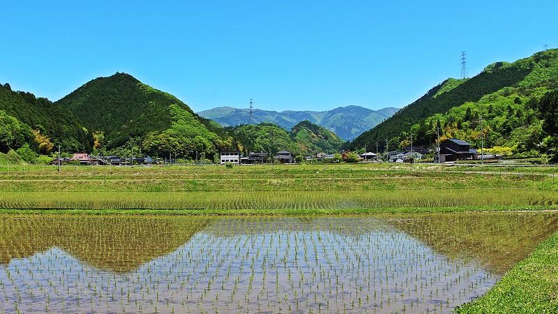 More Mimasaka (2)