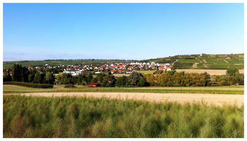 Einer der letzten Blicke auf Schwabenheim an der Selz