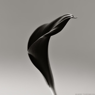 ''Esprit'' - Black And White Photography | by James Thornbrook