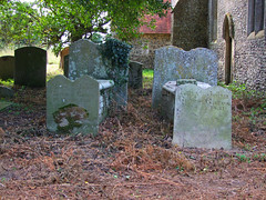 The Illington dead