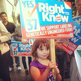 5-year-old Kate at the Yes on Prop 37 rally at City Hall in Los Angeles #homeschool #unschool #labelgmos | by cheeseslave