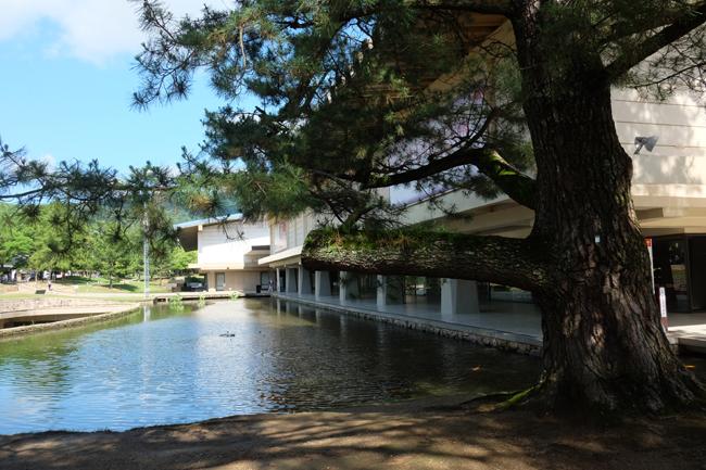 nara park museum