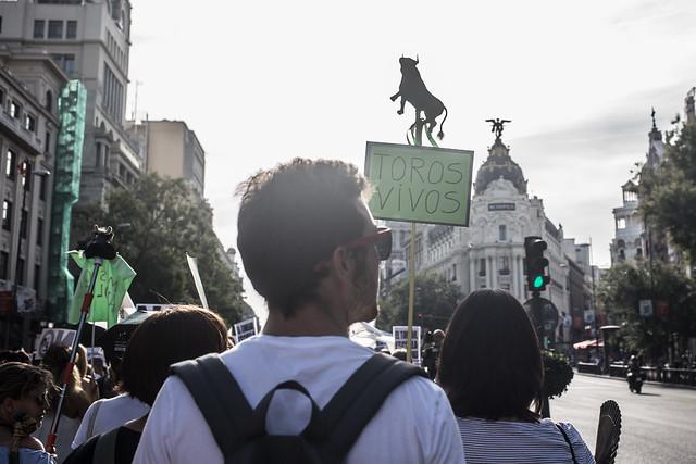 民眾舉著「鬥牛 活著」的抗議標語,認為鬥牛不是傳統而是國恥。 取自PACMA
