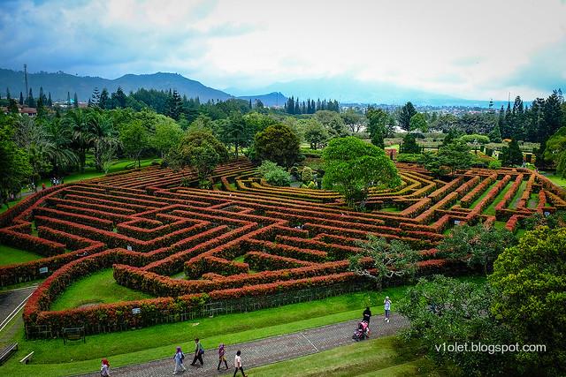Labyrinth Garden2-0184rw