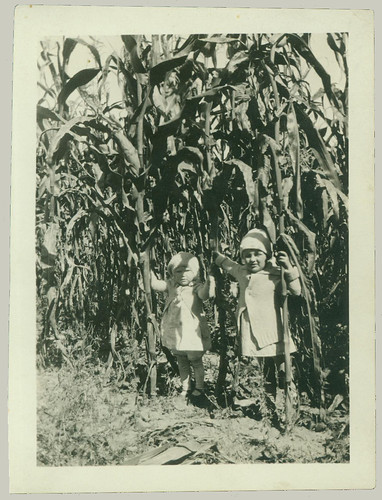 Two little ones in a corn field