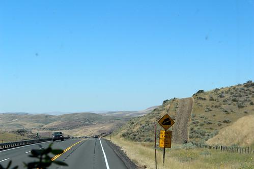 Curvy Roads-46