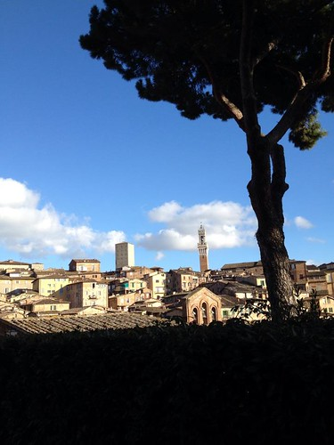 Sunny Siena | by nmanno